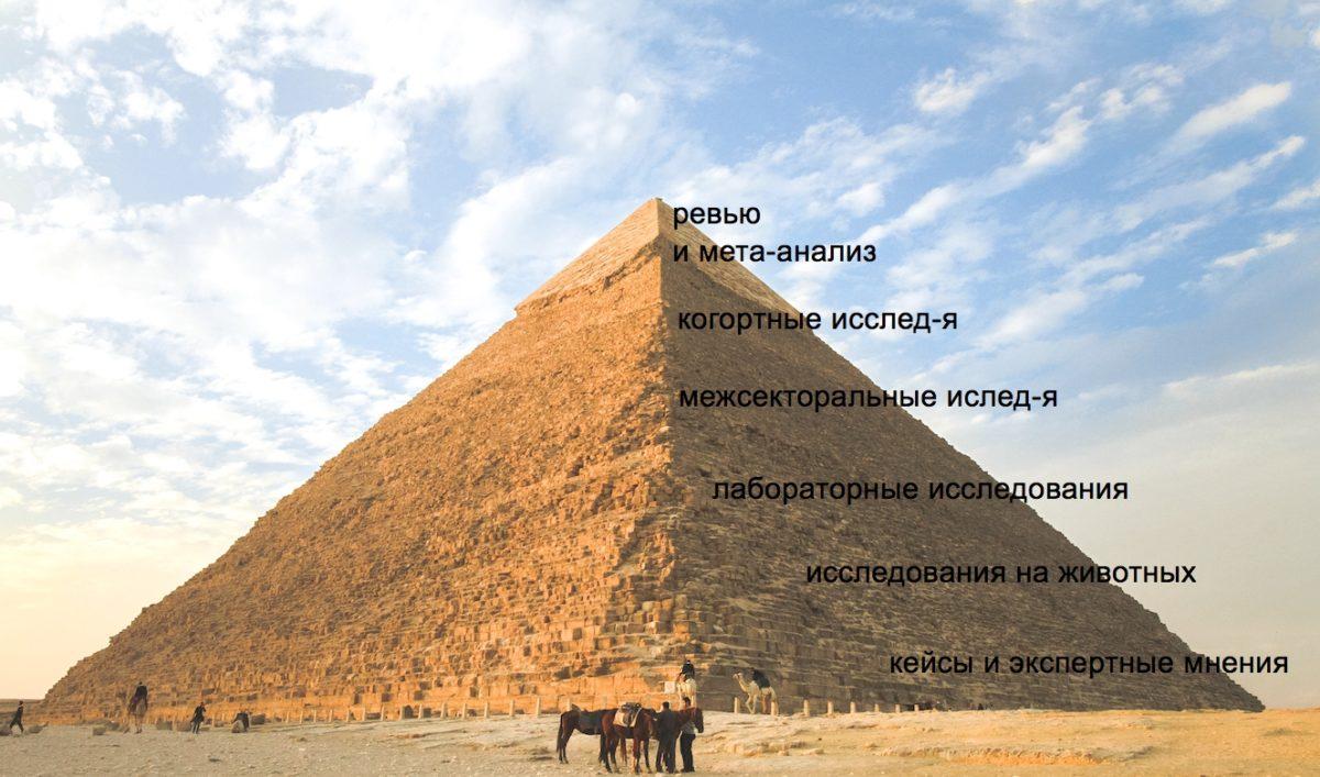 Пирамида доказательств: каким исследованиям можно верить